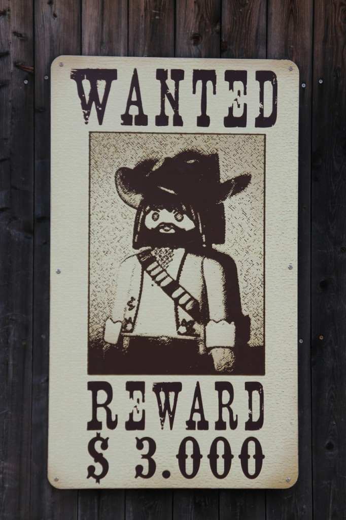 bandit-273813_1280